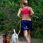 Vrai ou Faux sur l'exercice
