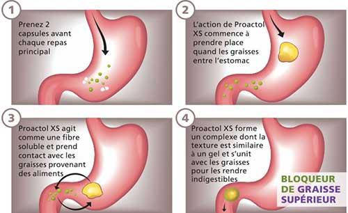 proactol-xs-fonctionne
