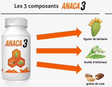 Anaca3 avis